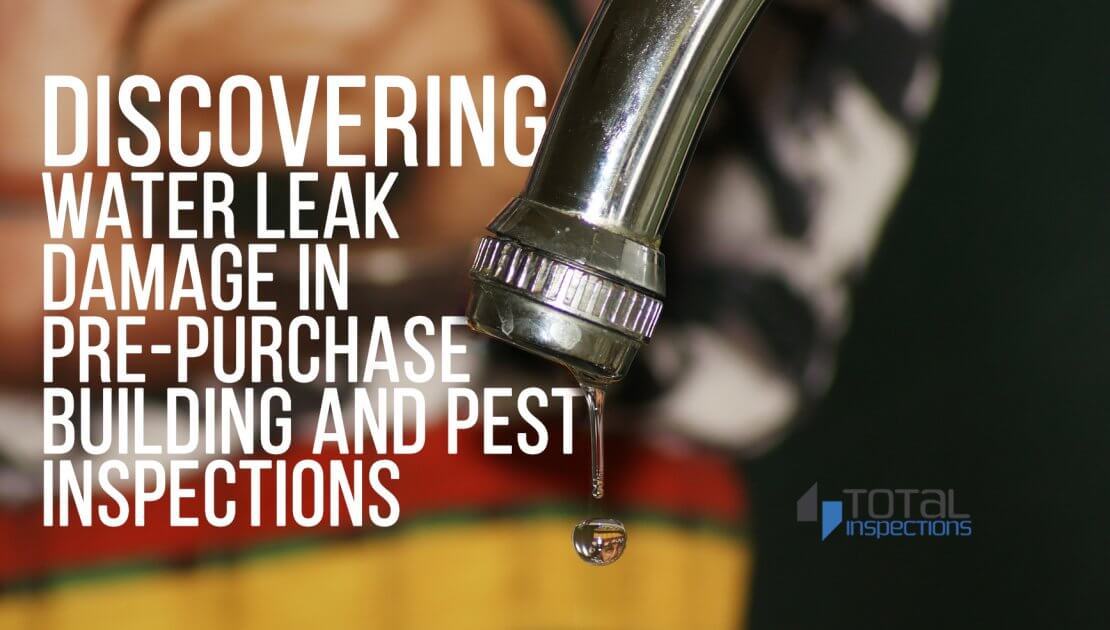 Featured Image for Blog Discovering Water Leak Damage in Pre-Purchase building and pest inspections gold coast total inspections