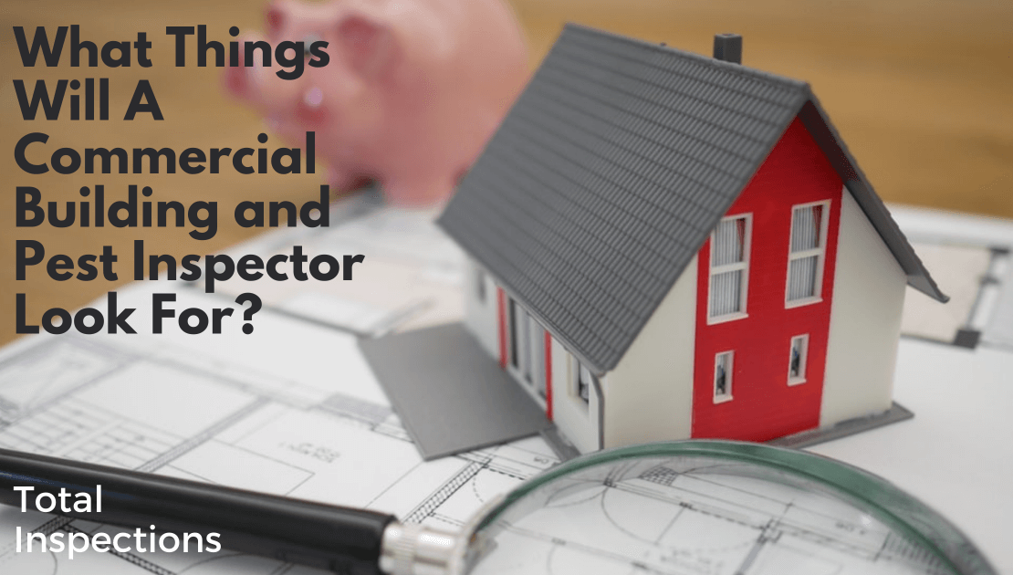 What Things Will A Commercial Building and Pest Inspector Look For? Header image
